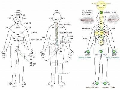 s-SE研究所人体図3.jpg